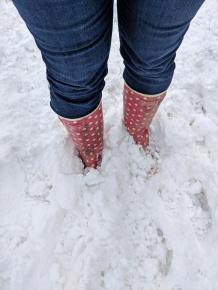 Ankle deep snow!