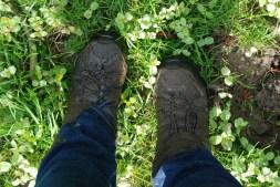 Got a bit muddy...