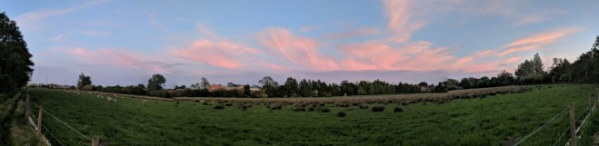 Beautiful sunset on the riverbank